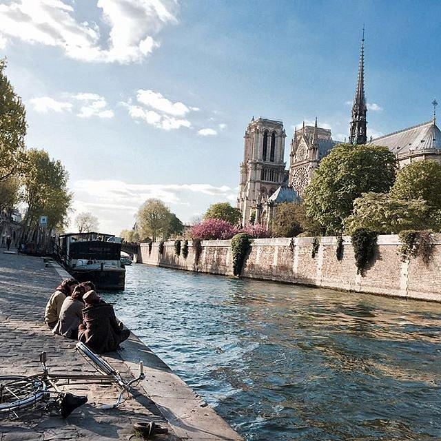 A walk #notredame #notredamedeparis  #paris #quaideseine
