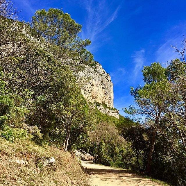 Little sunday walk #mountain #herault