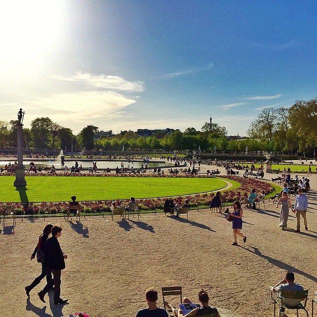 Sunny day in Paris #paris #jardinduluxembourg