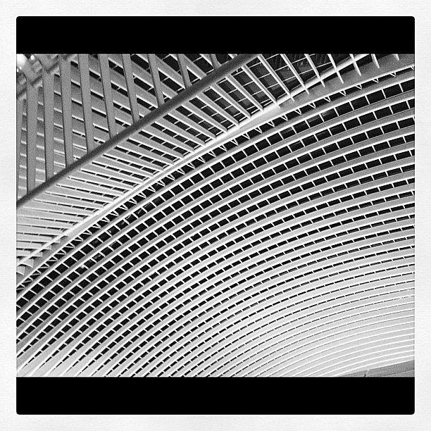Gare Liège Guillemins par Calatrava #belgique #architecture #liege